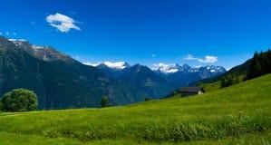 Natureza clara no verão nas montanhas suíças Imagem de Stock
