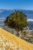 Natureza colorida bonita Foto de Stock Royalty Free