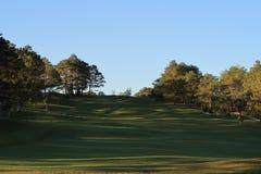 Natureza com grama mágica dos raios de sol, da luz do sol, a clara e a verde, prado Uso da foto no projeto da ideia para o golfe, fotos de stock royalty free