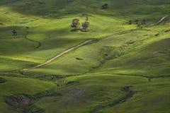 Natureza com lado verde Imagem de Stock