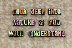 A natureza compreende que a aventura aprende o ambiente fotografia de stock royalty free