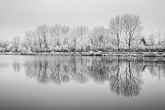 Natureza congelada pelo rio Elbe-Celakovice, representante checo Imagem de Stock