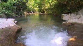 Natureza da água em france vídeos de arquivo