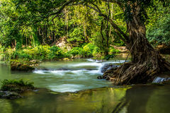 Natureza da cachoeira imagens de stock royalty free