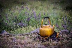 Natureza da chaleira de chá Imagens de Stock Royalty Free