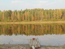 Natureza da floresta do verão do rio agradável Fotos de Stock Royalty Free
