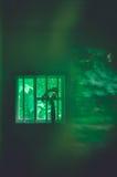 Natureza da janela Imagens de Stock Royalty Free
