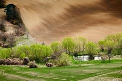 Natureza da mola Imagem de Stock Royalty Free