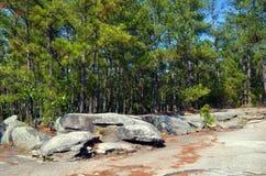 A natureza da montanha de pedra Imagens de Stock