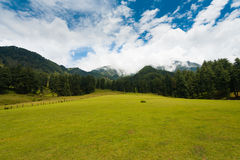 Natureza da montanha do monte de Pahalgam do vale de Kashmir Aru foto de stock royalty free