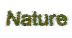 Natureza da palavra datilografada por flores e por grama Fotografia de Stock Royalty Free