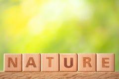 Natureza da palavra escrita no bloco de madeira na tabela de madeira imagens de stock
