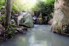 Natureza da queda pequena da água Imagens de Stock Royalty Free