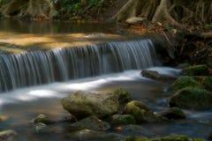 Natureza de Beautifull Imagens de Stock