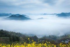 Natureza de China Shitan Fotografia de Stock