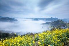 Natureza de China Shitan Imagem de Stock Royalty Free