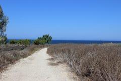 Natureza de Chipre Imagem de Stock