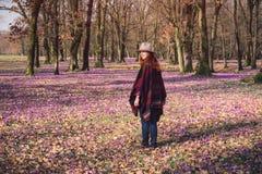 Natureza de florescência, açafrões, viajante novo Imagem de Stock Royalty Free