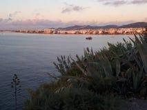 Natureza de Ibiza foto de stock