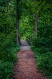 Natureza de Kansas City fotografia de stock