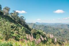 Natureza de LBeautiful e paisagem de Pai, Mae-Hong-Sorn, Tailândia Fotografia de Stock