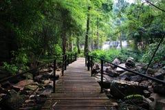 A natureza de madeira bonita da ponte e da cachoeira na natureza ajardina o Fotografia de Stock