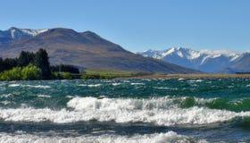 Natureza de Nova Zelândia Imagens de Stock