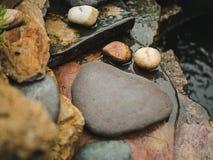 Natureza de pedra do musgo da água da decoração do jardim Fotografia de Stock