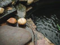 Natureza de pedra do musgo da água da decoração do jardim Fotos de Stock Royalty Free