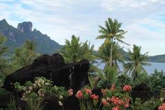Natureza de Polinésia francesa, ilha de Borabora, França fotografia de stock