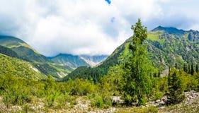 Natureza de Quirguizistão, Gregory Gorge foto de stock