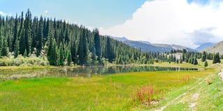Natureza de Quirguizistão, Gregory Gorge imagens de stock