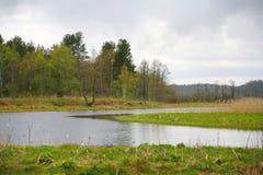 A natureza de Rússia do norte ajardine com floresta, rio, zona sujeita a inundações do rio e o prado riverine Fotos de Stock