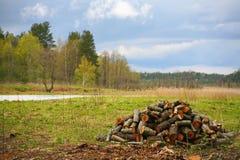 A natureza de Rússia do norte ajardine com floresta, rio, zona sujeita a inundações do rio e o prado riverine Uma pilha da lenha Imagem de Stock