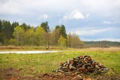 A natureza de Rússia do norte ajardine com floresta, rio, zona sujeita a inundações do rio e o prado riverine Uma pilha da lenha Foto de Stock Royalty Free