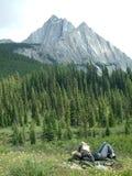 Natureza de relaxamento Fotografia de Stock Royalty Free