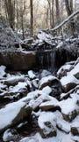 Natureza de Tennessee foto de stock royalty free