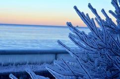 Natureza do gelo do frio da luz do sol do c?u imagem de stock