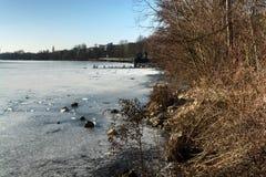 Natureza do inverno Fotografia de Stock