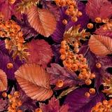 A natureza do outono da aquarela sae do fundo Imagens de Stock Royalty Free