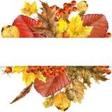 A natureza do outono da aquarela sae do fundo Imagem de Stock Royalty Free