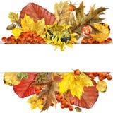 A natureza do outono da aquarela sae do fundo Imagens de Stock