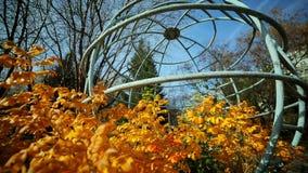 Natureza do outono A estrutura do metal na forma de um globo vídeos de arquivo
