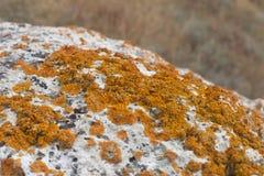 Natureza do parque natural da paisagem de Karalarsky Fotografia de Stock Royalty Free