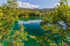 Natureza do Virgin do parque nacional dos lagos Plitvice, Croácia Imagem de Stock