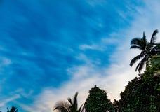 Natureza e céu Foto de Stock