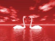 Natureza e cisnes Fotografia de Stock Royalty Free