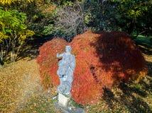 Natureza e paisagem: vista aérea de uma estátua em um parque, em uma folha do outono, em umas árvores frondosas e em um prado, ár Foto de Stock Royalty Free