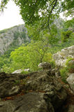 Natureza e rochas Fotografia de Stock