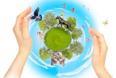 Natureza, ecologia e proteção de animais diferente fotografia de stock royalty free